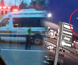 WATCH: Terrifying moment plane performs emergency landing on busy highway