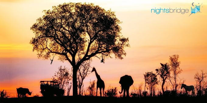 From the Big Five to Bed and Breakfast – Travelport and NightsBridge bring more of Africa to the world